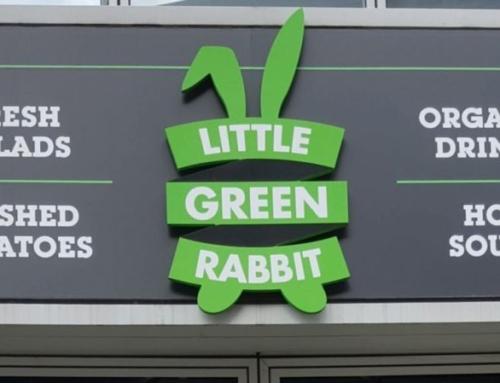Little Green Rabbit