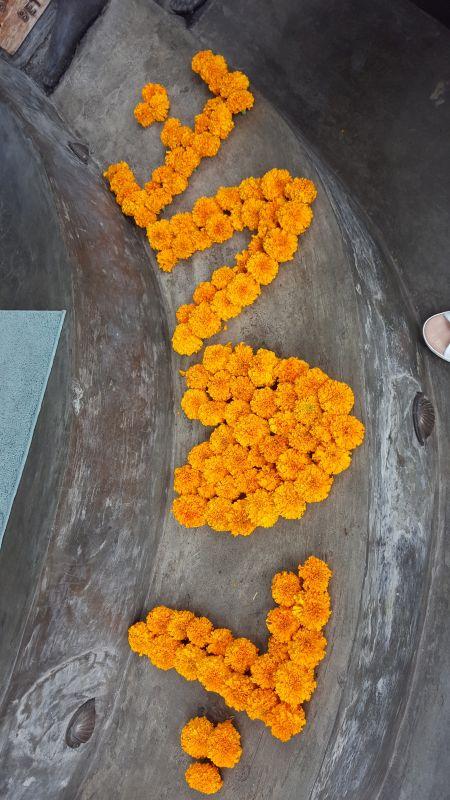 """Essen in Ubud. Mudra Café. Orange Blüten auf der Stufe, die das Wort """"Love"""" schreiben."""