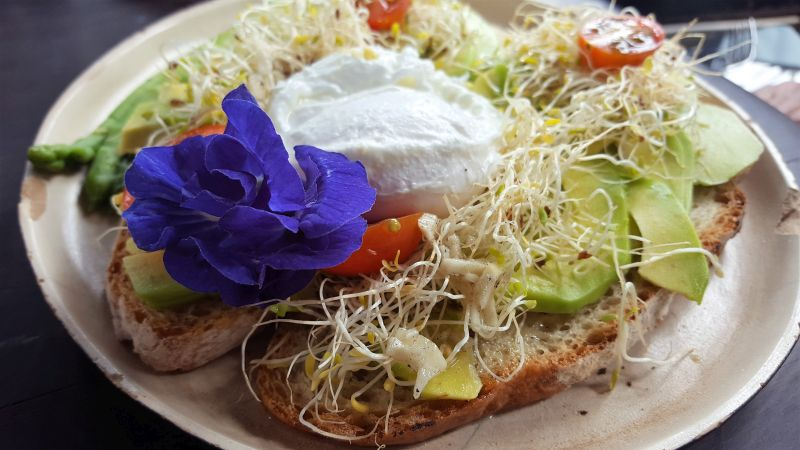 Essen in Ubud. Mudra Café. Avogasm Toast mit pochiertem Ei. Getoastetes Ciabbata mit Avocado, Sprossen, geheimer französischer Soße mit Knoblauch und einem poschierten Ei. Dekoriert mit einer blauen Blüte.