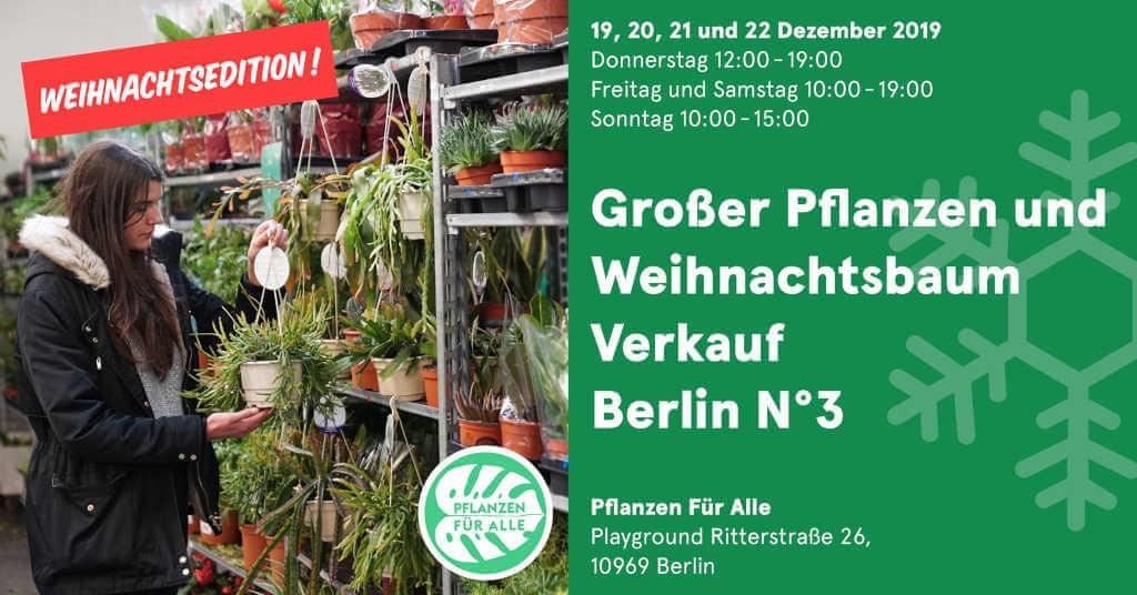 Pflanzen und Weihnachtsbaum Verkauf