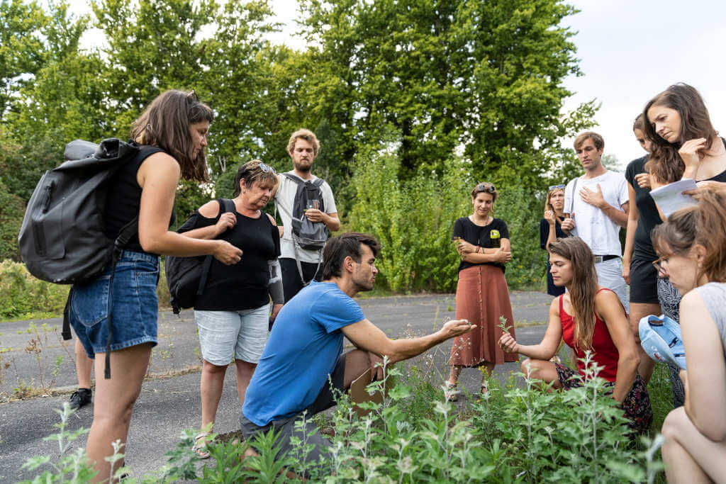 Urban Foraging with Edible Alchemy