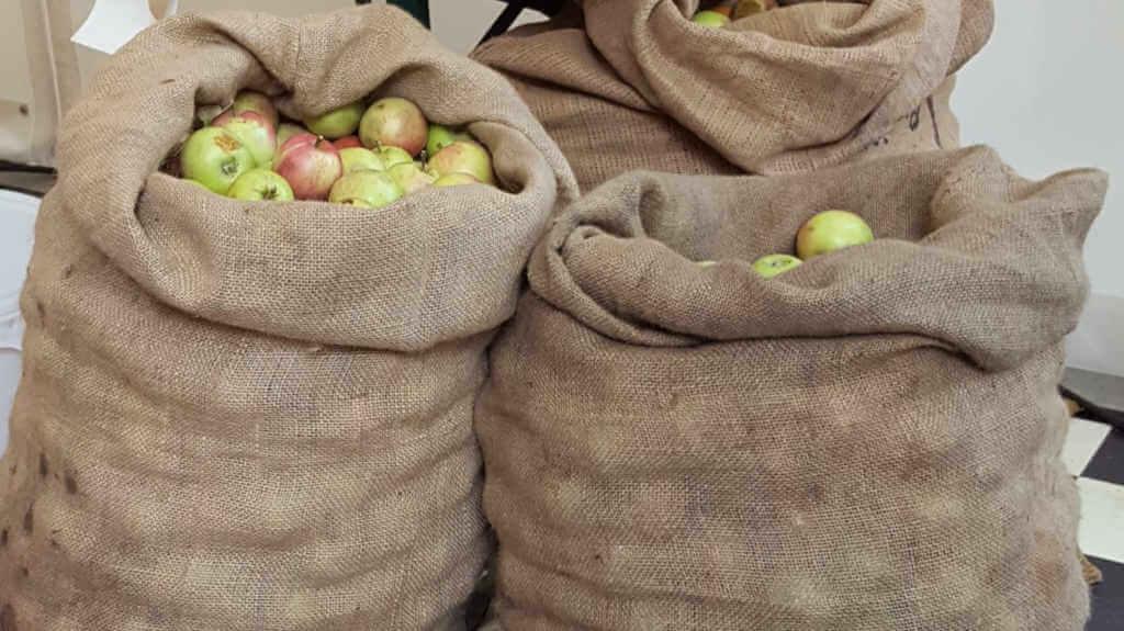 Essen macht Klima - Sack mit Äpfeln